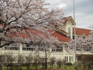 赤い屋根の 小学校