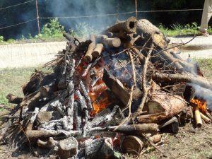 広場で 石を焼く