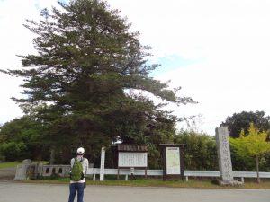 黒木の御所跡