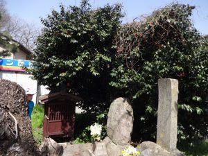 銘さえない 丸い石が墓碑として