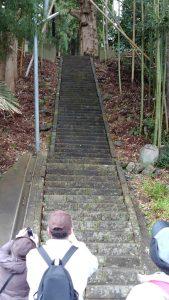 大椋神社の急な石段