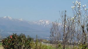 金北山を望む