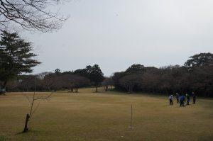 小木 城山公園の桜