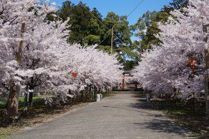 金井 八幡宮